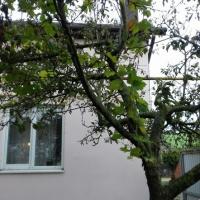 Квартира на земле в п.Суворов-Черкесском - 3