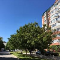 2 комнатная квартира в г.Анапа (видео) - 2